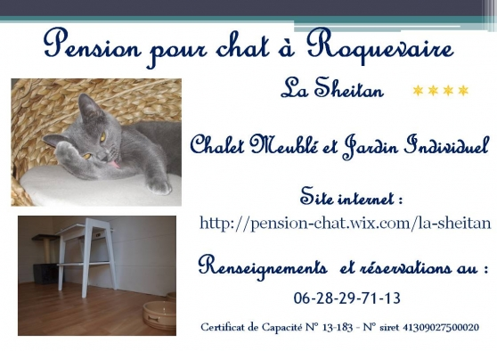 pension chat 29