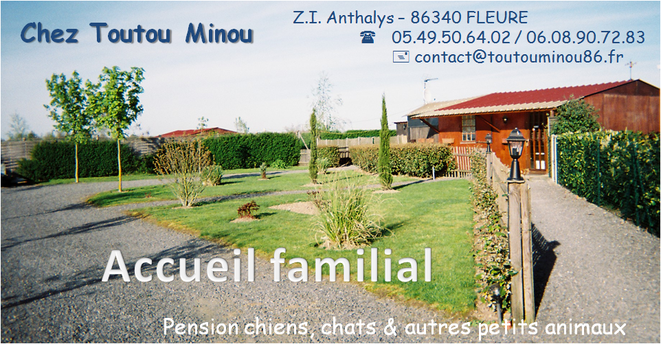 pension chat 90