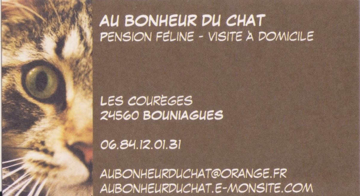 85 Carte De Visite Pension Pour Chats