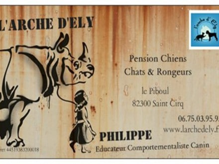 pension chat marignane
