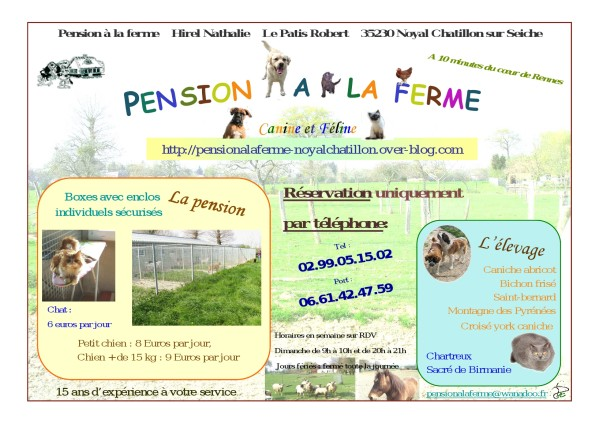pension chat noyal chatillon sur seiche