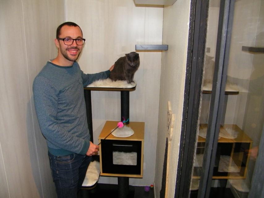 pension chat rouen