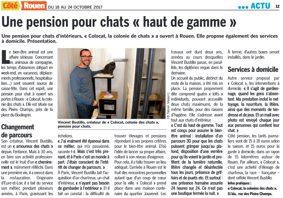 pension chat rouen