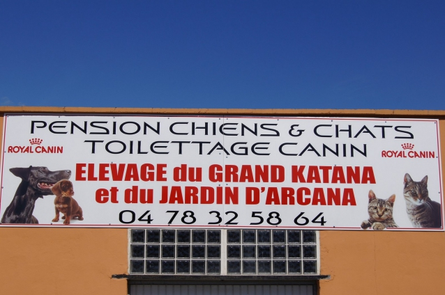 pension chien 32