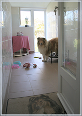 pension chien 77 chaumes