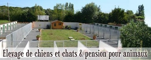 pension chien caen