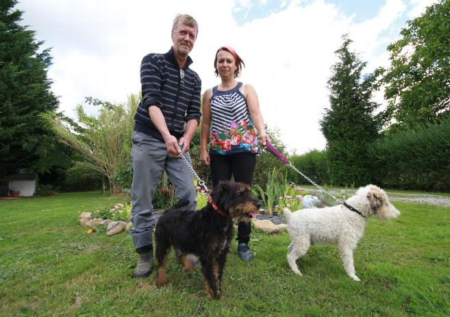 pension chien cantal