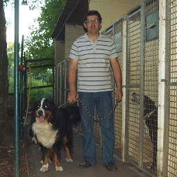 pension chien nevers