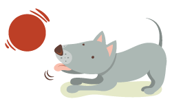 pension chien prauthoy