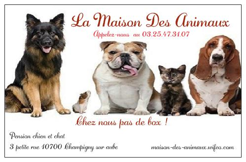 pension chien troyes