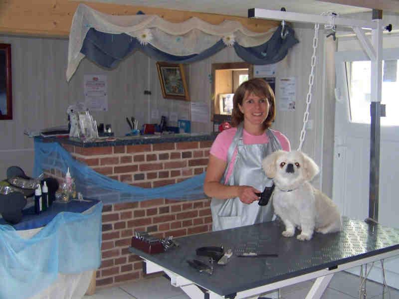 pension chien west cappel